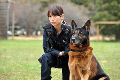 (C)2011「DOG×POLICE」FILM PARTNERS